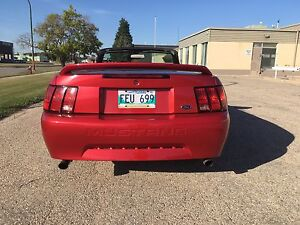 2000 mustang convertible for sale   $6000.00 obo