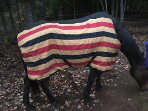 "Horse Blankets 67"" - 84"""