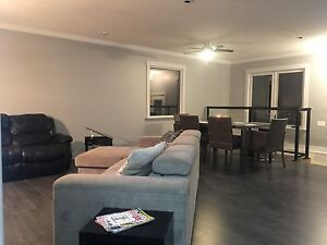 Newly renovated. Move in ready. Quiet neighbourhood  Strathcona County Edmonton Area image 2