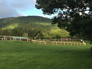 Valley Vows Currumbin Valley Gold Coast South Preview