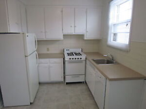 LARGE, RENOVATED, HEATED 2BR ON TERREBONNE IN NDG - JULY