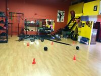 Personal Fitness Training / economical prices