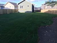 Professional Fencing and Landscaping