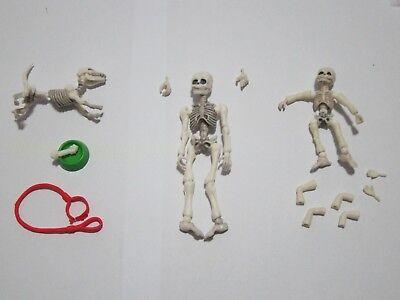Posable Skeletons (Set of Mr. Bones, Child and Dog Skeleton Fully Posable Action Figure Set)