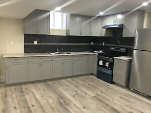 Top of line 2 bed basement - walkout - legal - Sep 1