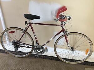 Retro Steel Frame Multi-speed Bike
