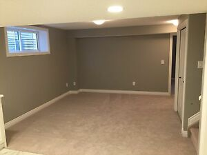 Brand new basement suite available, separate and sound proof!  Edmonton Edmonton Area image 6
