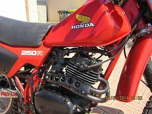 1982 HONDA XL250R Canning Vale Canning Area Preview