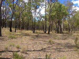 Cheap Country Land NSW via Dunedoo or Merriwa (CLEARANCE