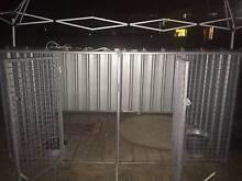 Dog Kennel's Berserker Rockhampton City Preview