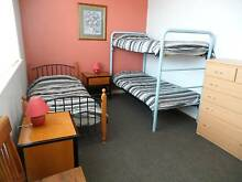Bed for female traveller in an attractive 2 BR flat St Kilda Port Phillip Preview