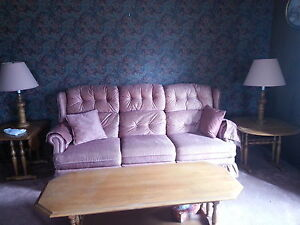 Free Couch & Matching Chair