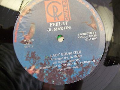 Lady Equalizer Change The World Feel It 12  Single Charlies Vinyl Record Nm