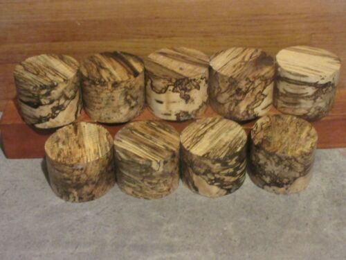 9PC SPALTED MISSOURI HACKBERRY TURNING WOOD BOWL BLANK