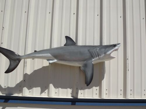 """53"""" Great Shark Two Sided Shark Mount Replica - 10 Business Day Production Time"""