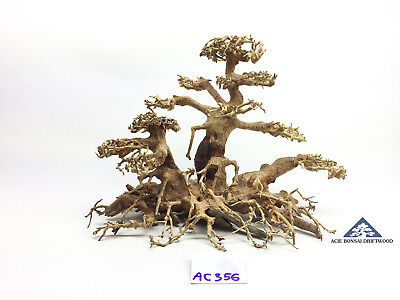 Bonsai Driftwood Tree for Aquarium Moss Fish Shrimp Planted Tank -Size L- AC356