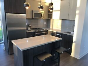 $25,000 Condo Showroom Kitchen - NEED GONE ASAP