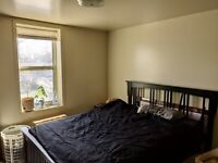 Large 1 bedroom - 2nd floor - George and Dublin - Downtown