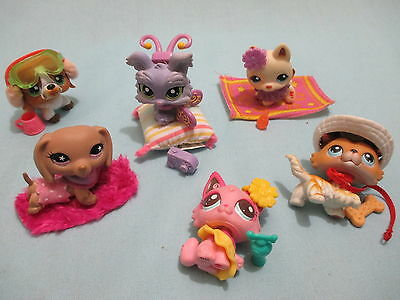 Littlest Pet Shop LOT 4 pcs (1 Dog + 3 Clothing Accessories) LPS RANDOM 💕 GIFT!