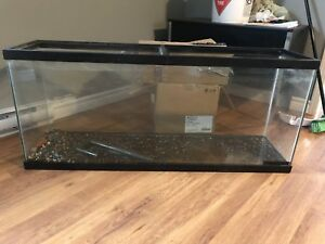 55 gallon tank/aquarium