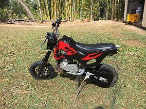49cc mini motorbike Narangba Caboolture Area Preview