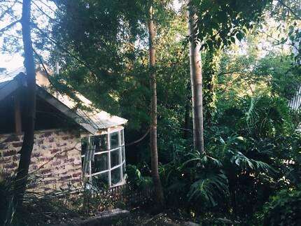 Self contained bush studio