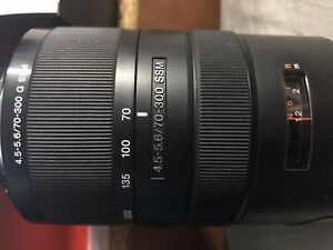 Sony 70-300mm lens with Fotodiox adapter.