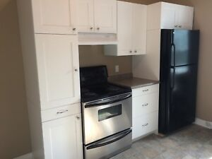 Large 2 Bedroom Downtown Kingston