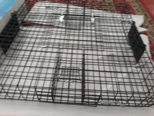 Rugged Ranch SQRTO Squirrelinator Trap CatchMor Live Animal 2 Door Metal Cage