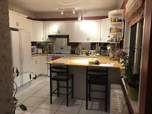 roommate needed in bright new house close to Dal