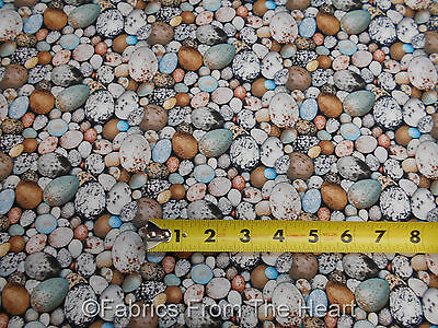 - Birdwatching Wild Bird Nest Eggs Nature Packed BY YARDS Elizabeths Studio Fabric