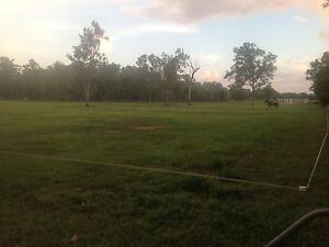 Horse Paddocks $50 a week Humpty Doo Litchfield Area Preview