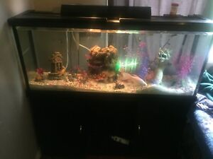 55 gallon fish tank for sale REDUCED would like to sell ASAP
