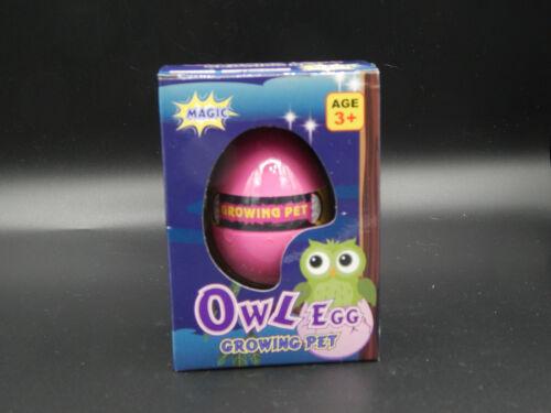 Owl Egg Growing Egg