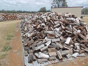 FIREWOOD QUALITY MIXED HARDWOOD Maroochydore Maroochydore Area Preview