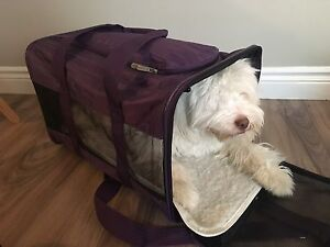 LARGE SIZE SHERPA AIRPLANE PET KENNEL