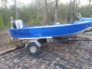 11 ft tinny w/ trailer and 15 hp parson