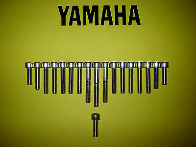 Yamaha 50cc RD50 DT50M TY50P Stainless Steel SS Engine Bolt Allen Screw Kit