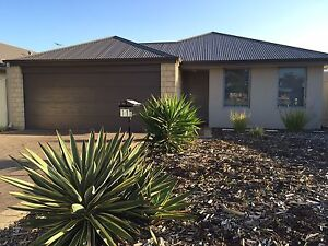 New house for rent Dudley Park Mandurah Area Preview