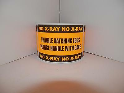 250 Fragile Hatching Eggs Handlecare No X-ray 2x3 Sticker Label Fluor Orange