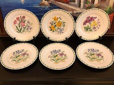6 Thomson Pottery Botanic Floral Garden Large Dinner Plates MINT - Large Dinner Plates