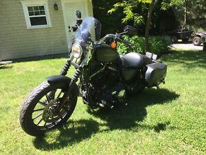 Harley 883 2010