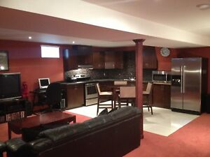 Beautiful Basement Apartment Now Available