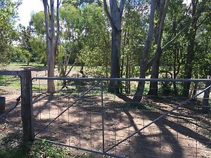 Agistment paddock available Burpengary Caboolture Area Preview