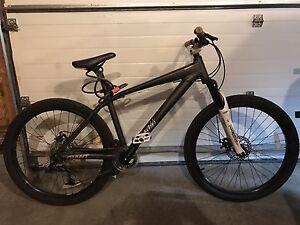 Giant Brass Dirt jumper mountain bike $350