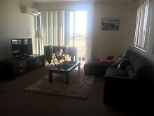 Single room for rent in modern apartment Merrylands Parramatta Area Preview