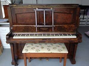 Piano Chappell London Ellis Lane Camden Area Preview