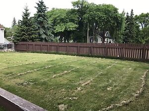 Bright newly renovated 2 bedroom - Lease Takeover in Wetaskiwin