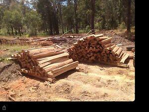 Split white mahogany fence post Armidale Armidale City Preview