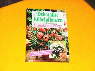 Decorative Kübelpflanzen Auswahl u. Pflege